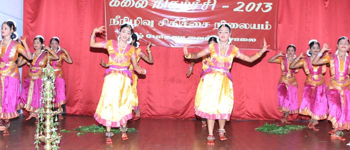 Cultural Show 2013-slider