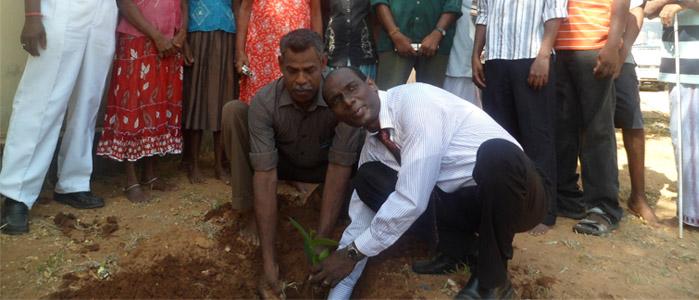 Jambu Planting 2013-slider